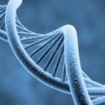 la genética en los masajes